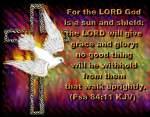 holy spirit (13)